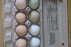 eggsrainbow